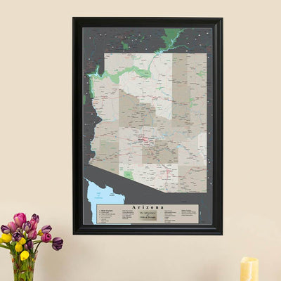 Earth Toned Arizona State Push Pin Map with Pins main picture