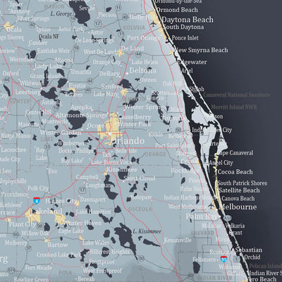 Push Pin Travel Maps Florida Slate  Map Closeup of Orlando