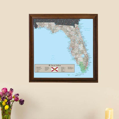 Earth Toned Florida State Map main image