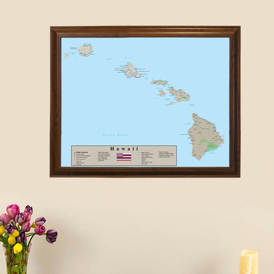 Earth Toned Hawaii Push Pin Travel Map main image