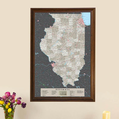 Earth Toned Illinois State Travel Map main image