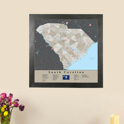 Earth Toned South Carolina State Map main image
