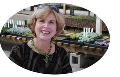 Debra Lee Baldwin Succulent Author