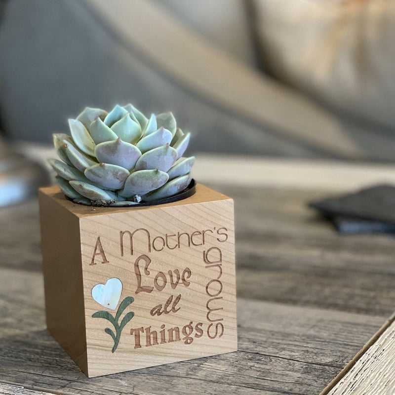 Mothers Day Wood Gift Cube (LIMITED EDITION)-Succulent - Gift-The Succulent Source