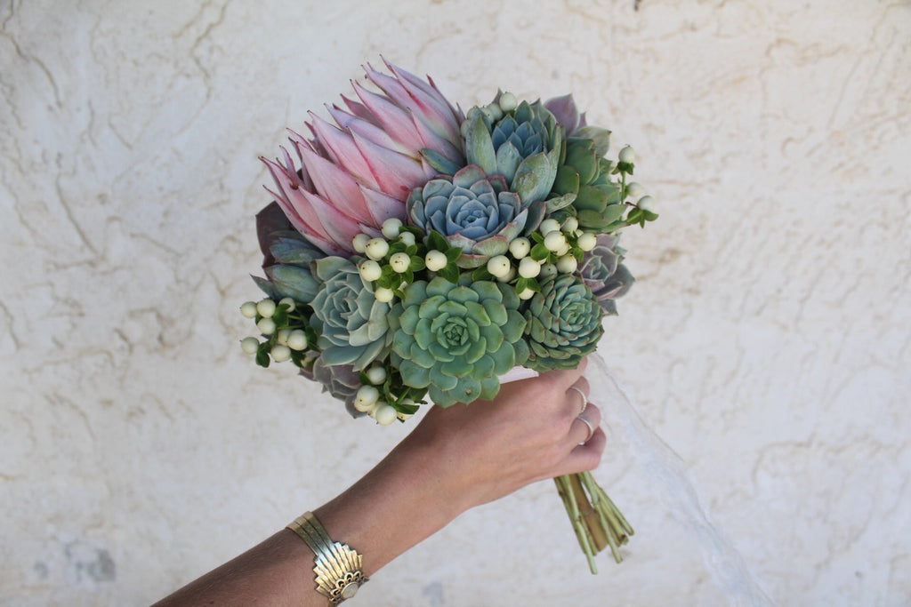 Succulent Bouquets Wedding Succulent Favors For Sale Bulk Succulents