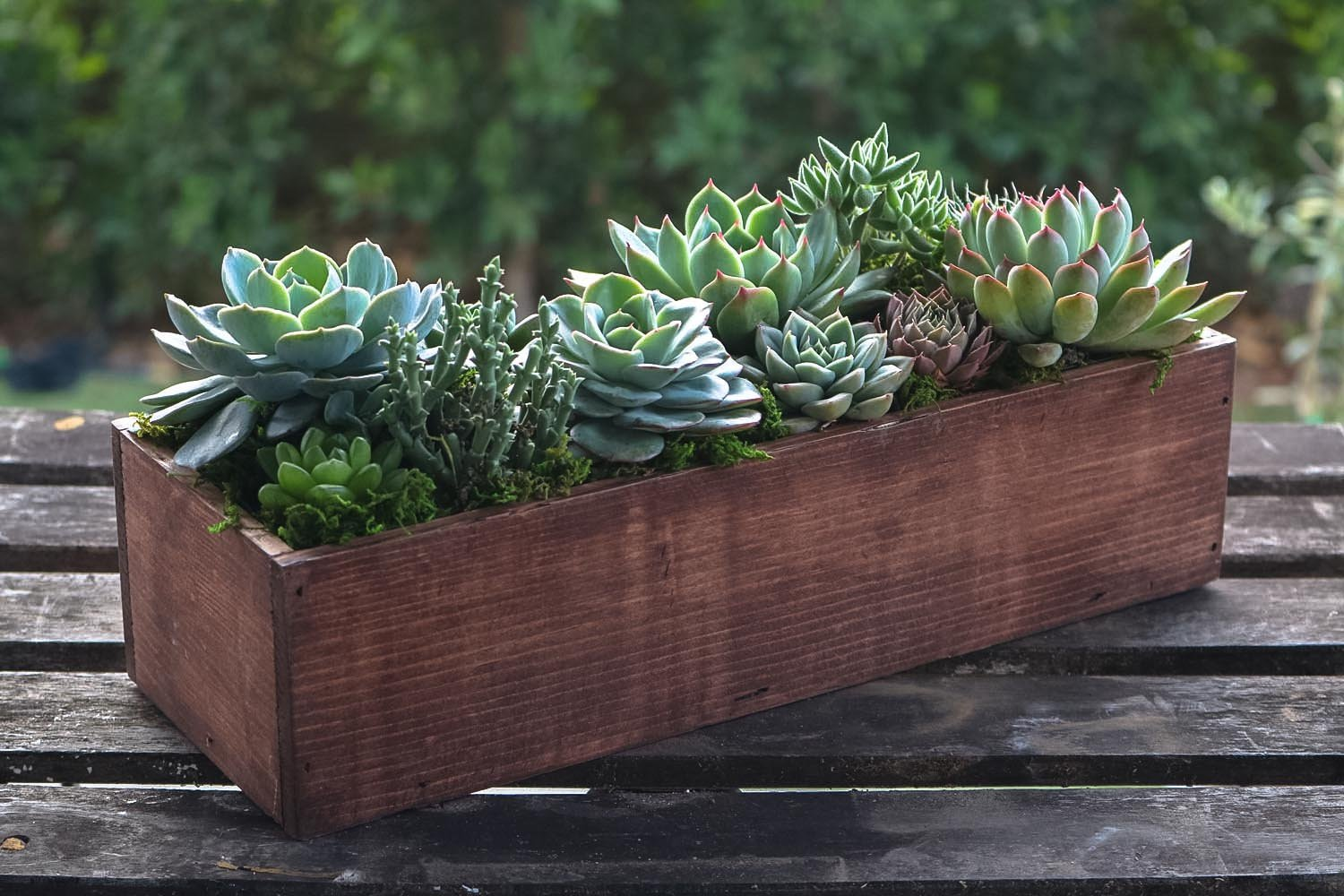 Succulent Wedding Centerpieces.Large Reclaimed Wood