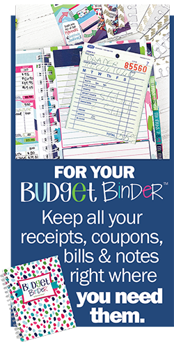 Insert the Pull & Place Strips into your Budget Binder™