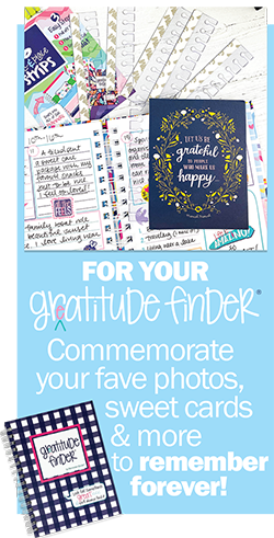 Insert the Pull & Place Strips into your Gratitude Finder® Journal