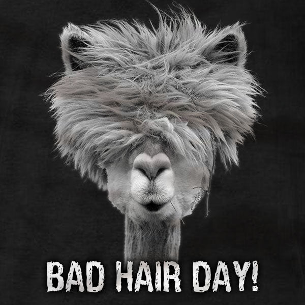Alpaca Bad Hair Day - Ladies Tee - Absurd Ink