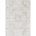 Tomsk 1202 Rose Beige Grey Transitional Patterned Rug
