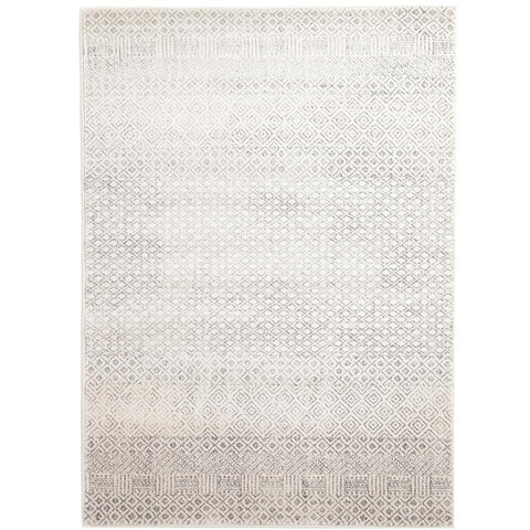 Dacca Transitional Grey Beige Designer Rug - Rugs Of Beauty - 1