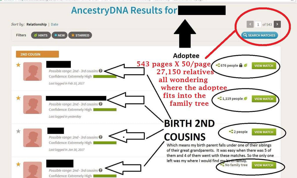 Steps to do after you get Ancestry DNA