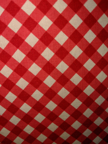 Red Seaside Gingham