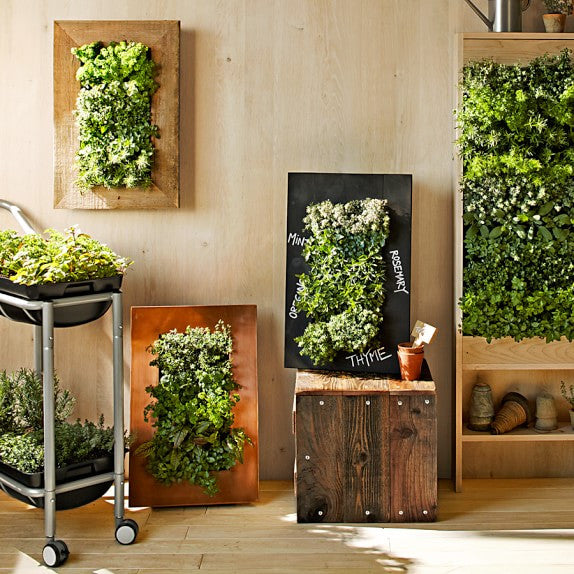 Five Things We're Loving Now IN: Sustainable Living