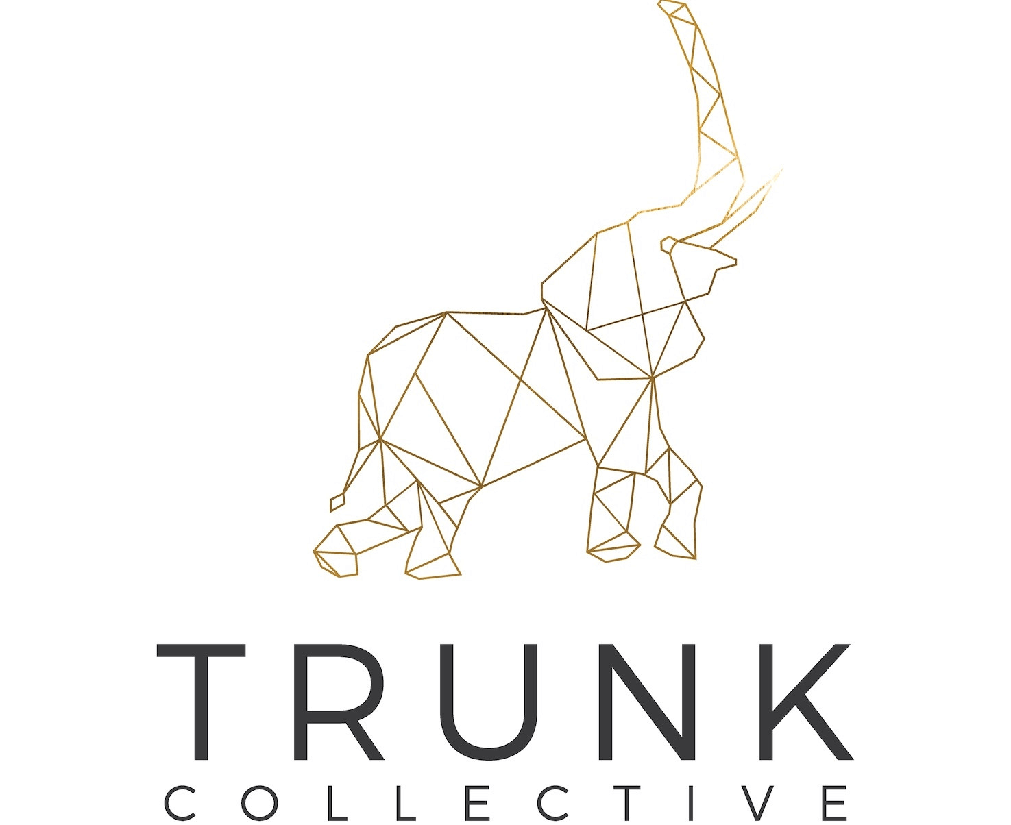 Trunk Collective Coupons and Promo Code