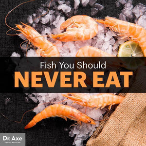 3 Fish You Should Never Eat