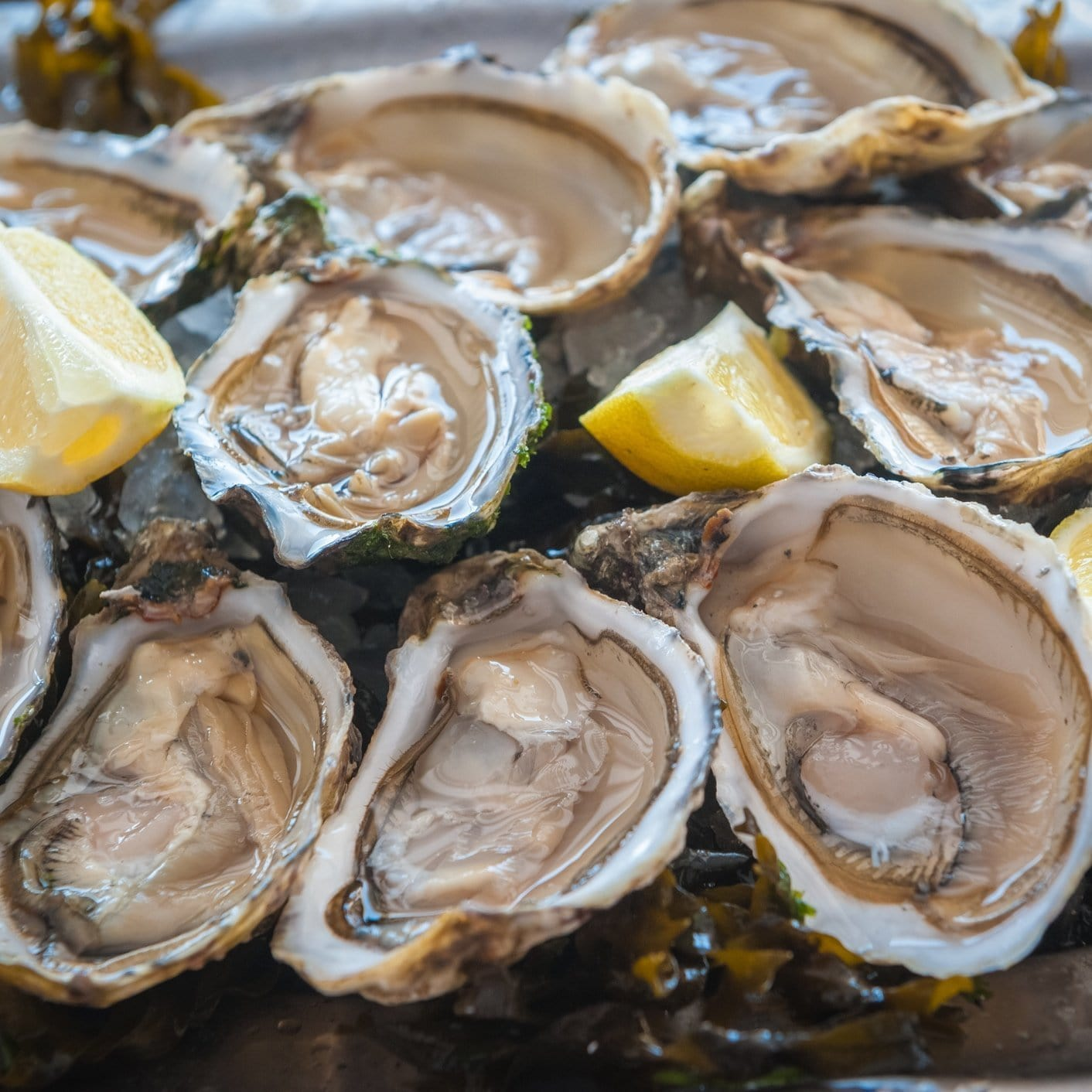 Aphrodisiac Foods - Global Seafoods North America