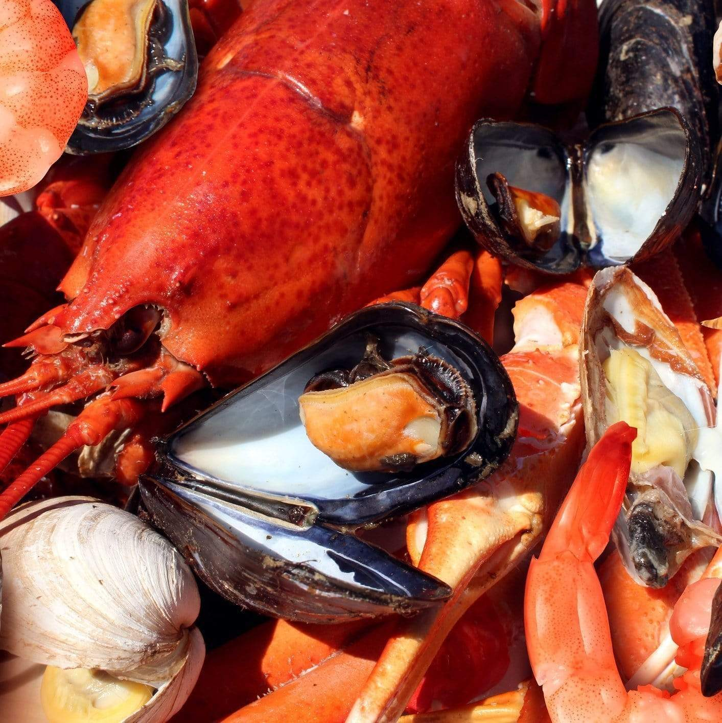 Shellfish Facts | GlobalSeafoods