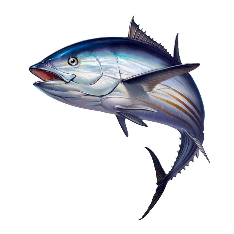 13 Benefits Of Tuna