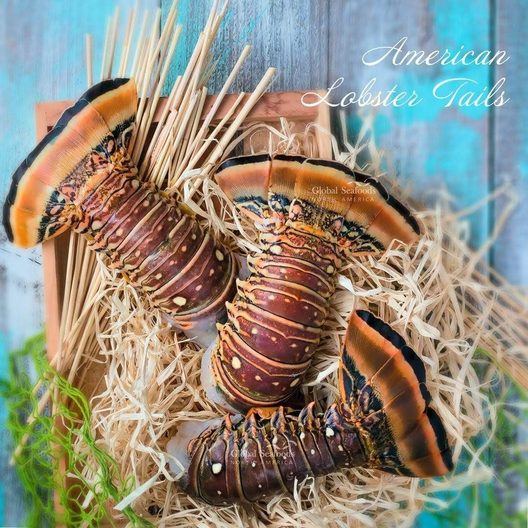 Global Seafoods North America Lobster Warm Water Lobster Tails - 5Lbs