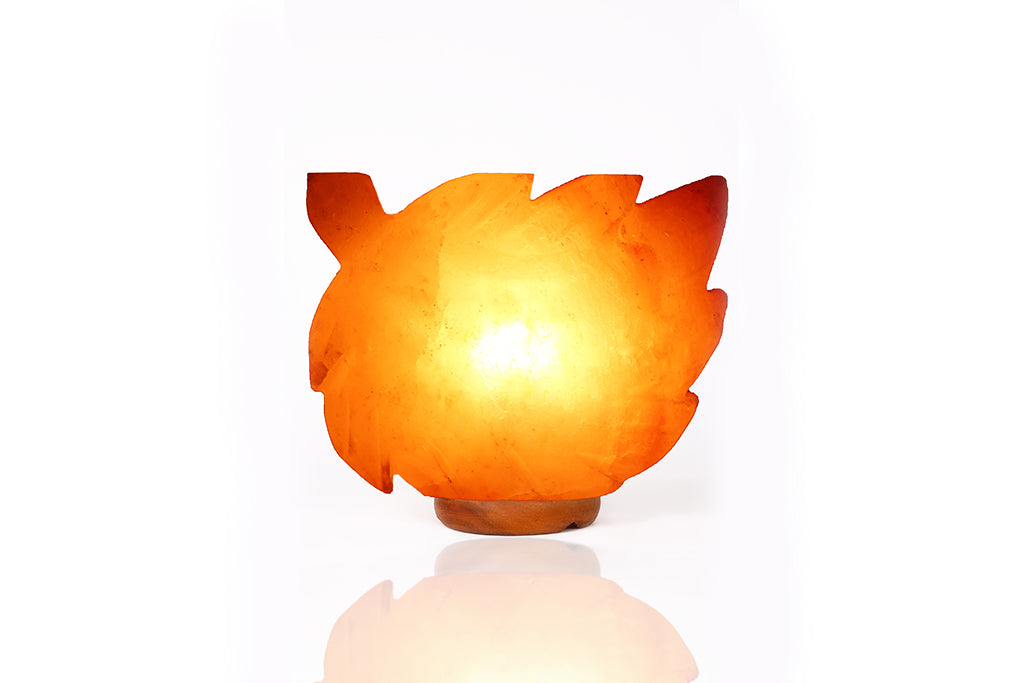 Himalayan Salt Fall Leaf Lamp