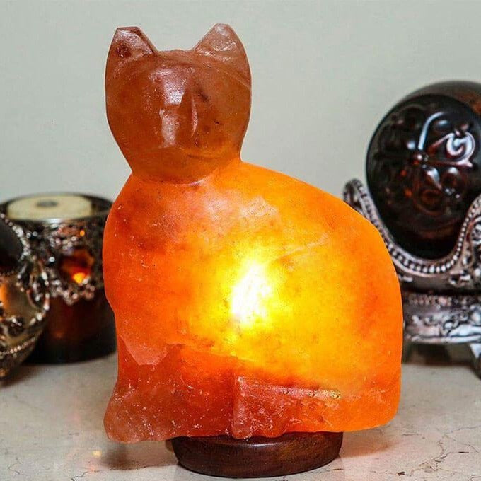 Himalayan Salt Cat Lamp