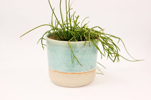Planter | 12cm | Green Pools