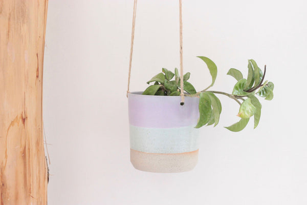 12cm Hanging Planter | Southern Lights | No Drainage