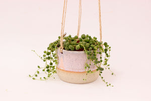 Small Hanging Planter | Horizon | No Drainage
