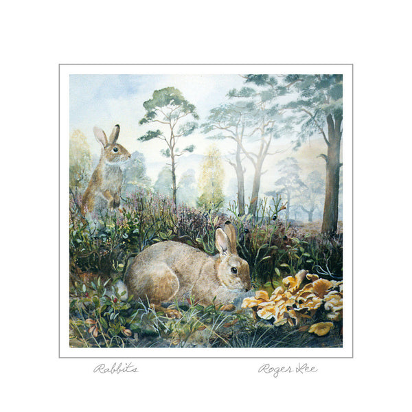 Rabbits in the Black Wood of Rannoch - Rogerleeart