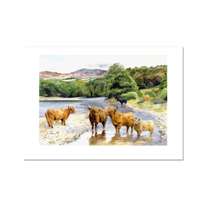 Highland cattle in the River Tummel fine Art Print - Rogerleeart