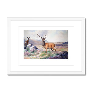 Framed & Mounted Print of red deer stag and hind - Rogerleeart