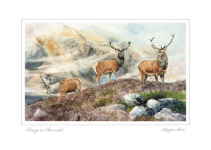Stags in the mist (w) - Rogerleeart