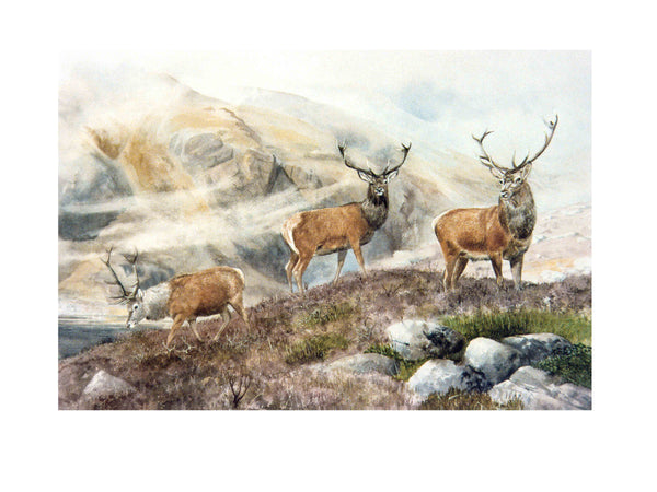 Stags in the mist art print - Rogerleeart