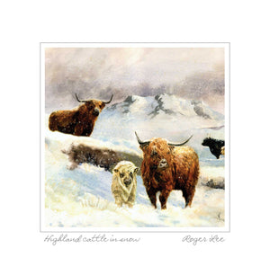 Highland Cattle in Snow - Rogerleeart