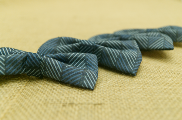 Chambray Herringbone Bowtie Sharp Plant Designs Kids Woodbridge