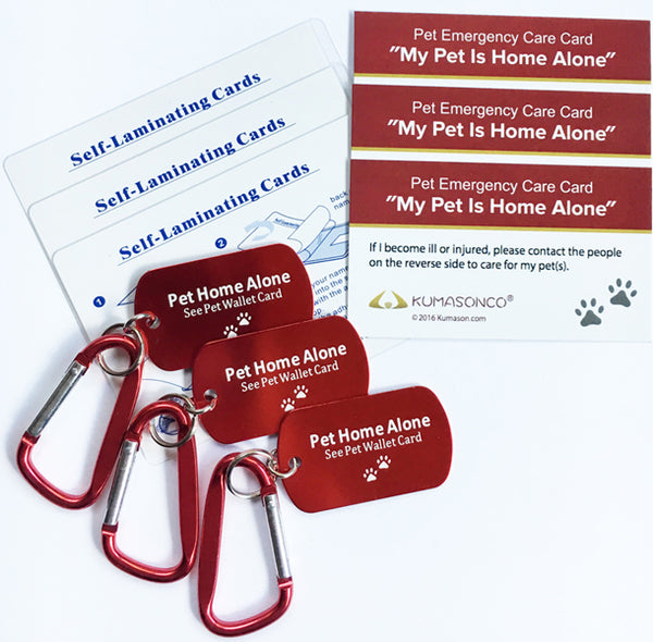 Emergency ID (Pack of 3)