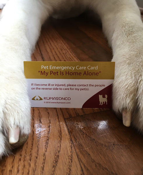 Pet Emergency Card & Laminating Pouch Dog (Qty 2)