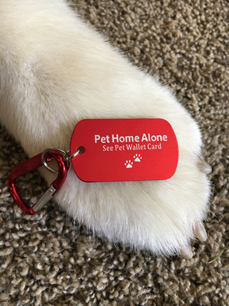 Pet Home Alone Emergency ID Tag