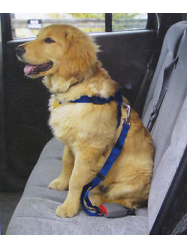 Car Safety Dog Lead