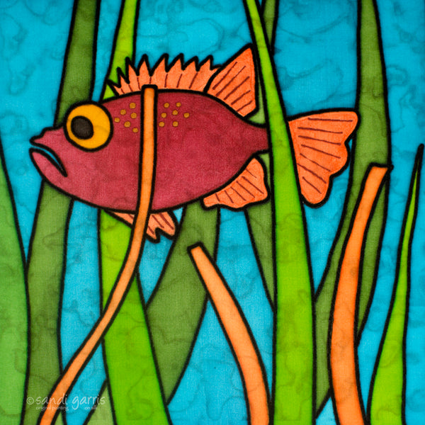 Big Eye Fish - 12 x 12