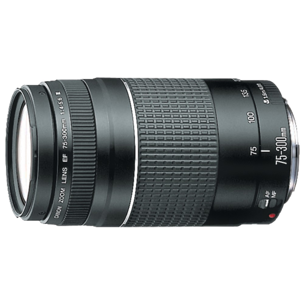 Canon Ef 75Mm300Mm Telephoto Zoom Lens Photo