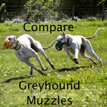 compare greyhound muzzles