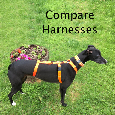 Harness Buying Guide