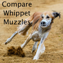 whippet muzzles