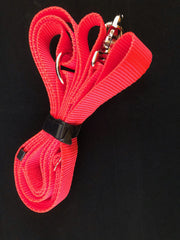 Split Safety Leash