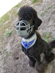 Double-Padded Irish Basket Muzzle