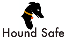 Sit. Stay safe!  by Something Special Pet Supplies