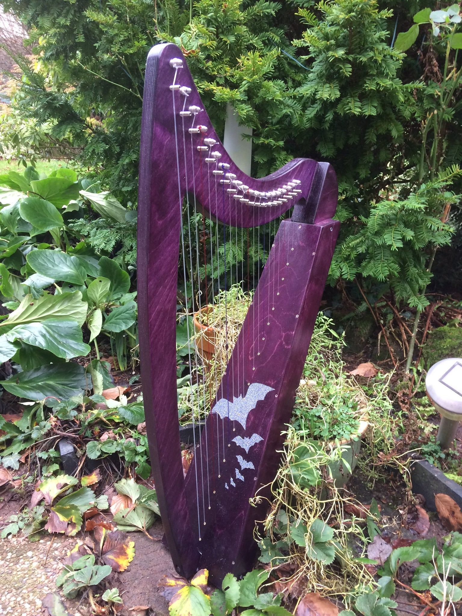 Derwent Harps Adventurer 20 in coloured wood stain Finishes Made in England