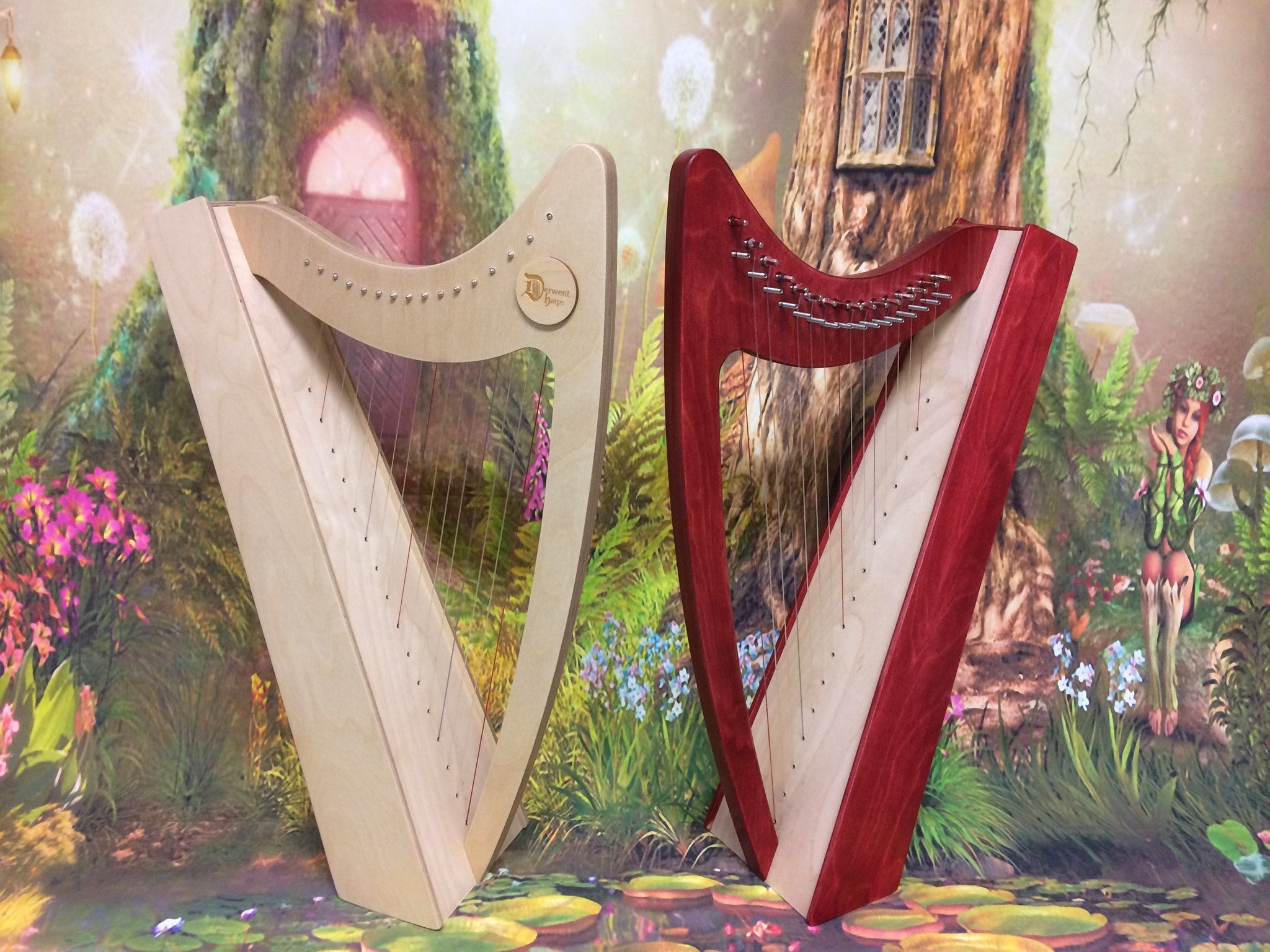 Discovery 16 - Discover the Harp at Home, includes harp, introductory book, video and tuning key